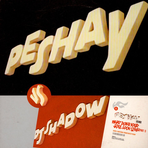 DJ Shadow - What Does Your Soul Look Like (Part 1) Remixes