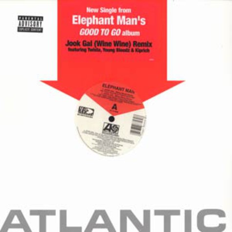 Elephant Man - Jook Gal Remix