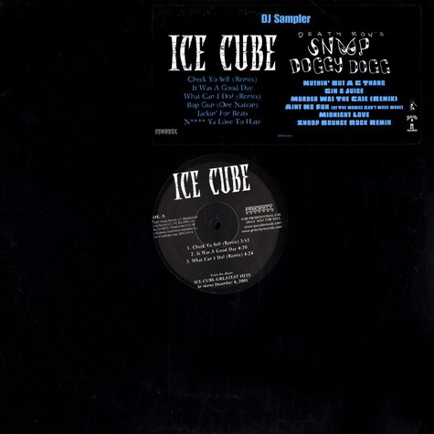 Ice Cube / Snoop Doggy Dogg - DJ sampler
