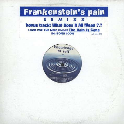 Frankenstein - What Does It All Mean?
