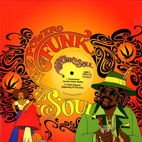 Power Of Funk & Soul, The - Volume 17