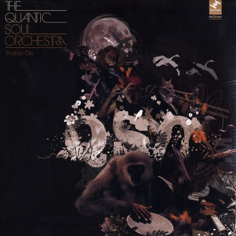 Quantic Soul Orchestra, The - Pushin on