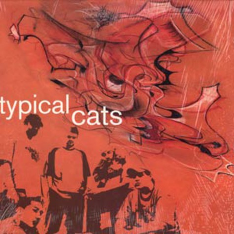 Typical Cats - Typical Cats