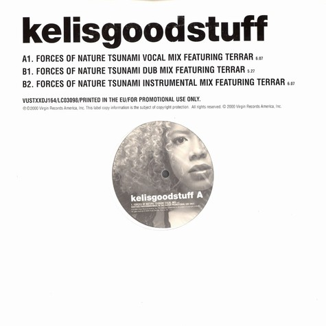 Kelis - Good stuff remix feat. Terrar