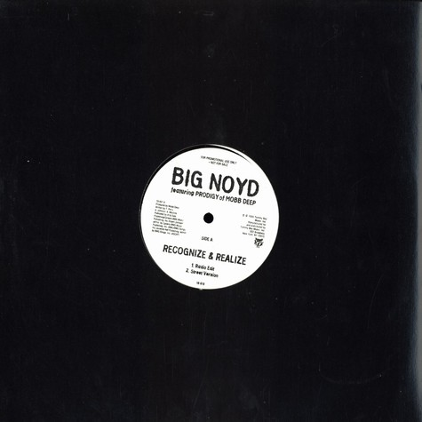 Big Noyd - Recognize & realize feat. Prodigy