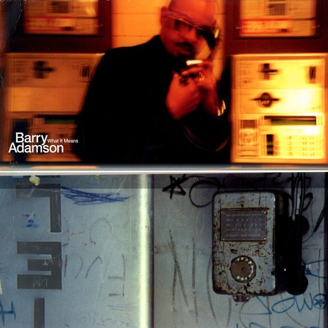 Barry Adamson - What it means