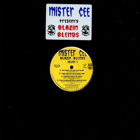 Mister Cee - Blazin blends Volume 5