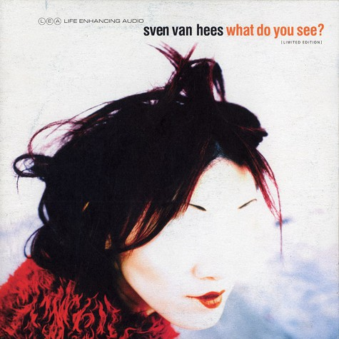 Sven Van Hees - What do you see?