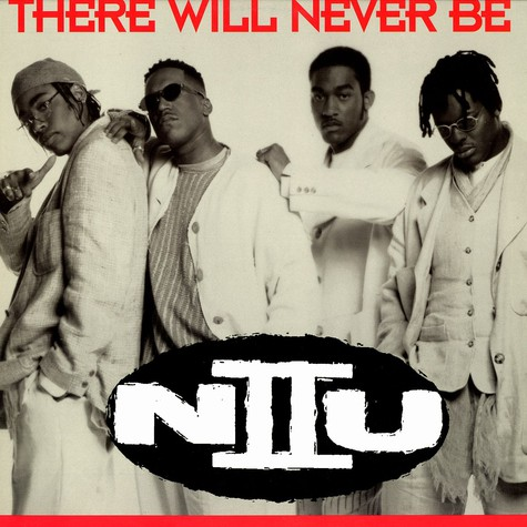 N II U - There Will Never Be