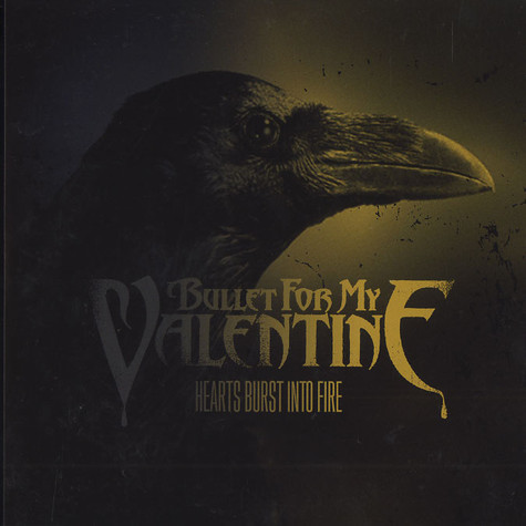 Bullet For My Valentine - Hearts burst info fire