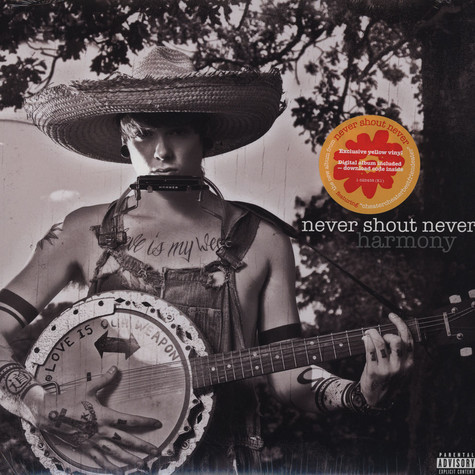 Never Shout Never - Harmony