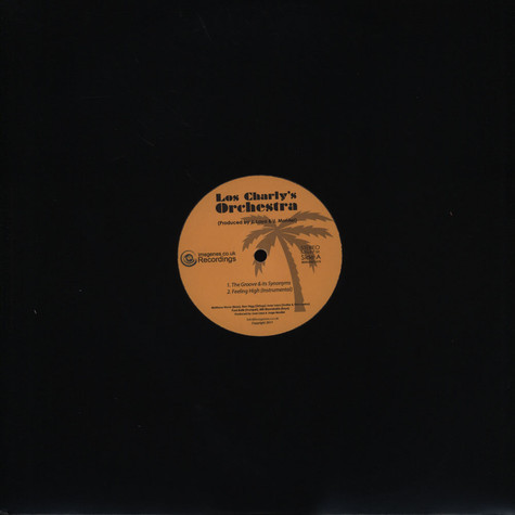 Los Charly's Orchestra - The Groove & Its Synonyms