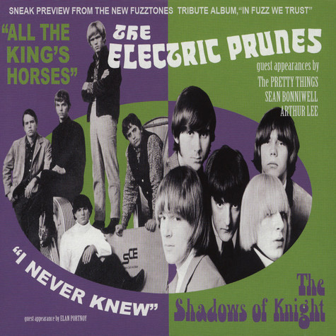 Electric Prunes, The / The Shadows Of Knight - All The King's Horses / I Never Knew