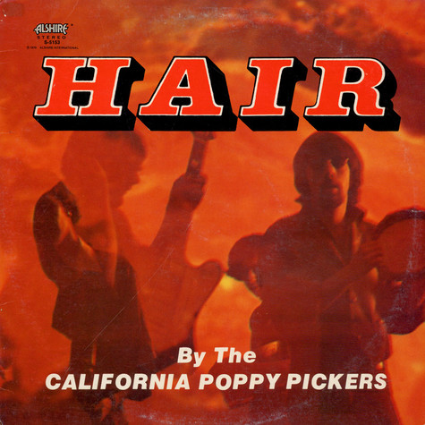 California poppy pickers, The - Hair