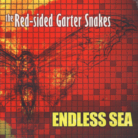 Red-Sided Garter Snakes - Endless Sea