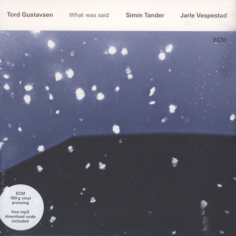Gustavsen / Tander / Vespestad - What Was Said