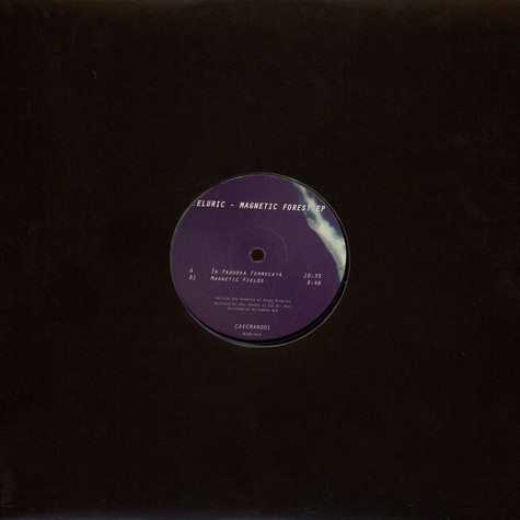 Teluric - Magnetic Forest EP