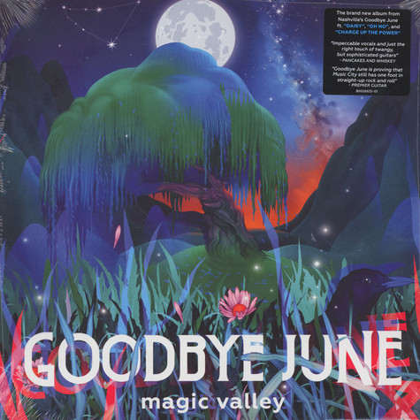 Goodbye June - Magic Valley