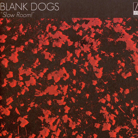 Blank Dogs - Slow Room!