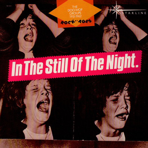 V.A. - In The Still Of The Night - The Doo-Wop Groups 1951-1962