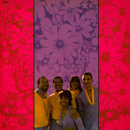 Fifth Dimension, The - Stoned Soul Picnic
