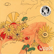 Woods - At Echo Lake