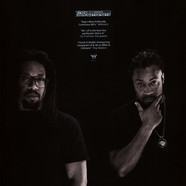 Perceptionists, The (Mr. Lif & Akrobatik ) - Resolution Clear Vinyl Edition