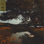 S. Carey - Hundred Acres Black Vinyl Edition