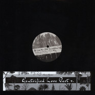 Theo Parrish - Gentrified Love Part 4 feat. Amp Fiddler & Randolph