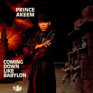 Prince Akeem - Coming Down Like Babylon