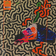 Animal Collective - Tangerine Reef Black Vinyl Edition