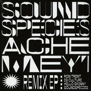 Sound Species & Ache Meyi - Remix EP