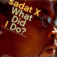 Sadat X - What did i do?