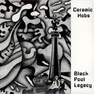 Ceramic Hobs - Black Pool Legacy