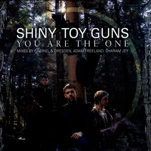 Shiny Toy Guys - You are the one