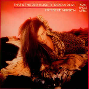 Dead Or Alive - That's The Way (I Like It) (Extended Version)